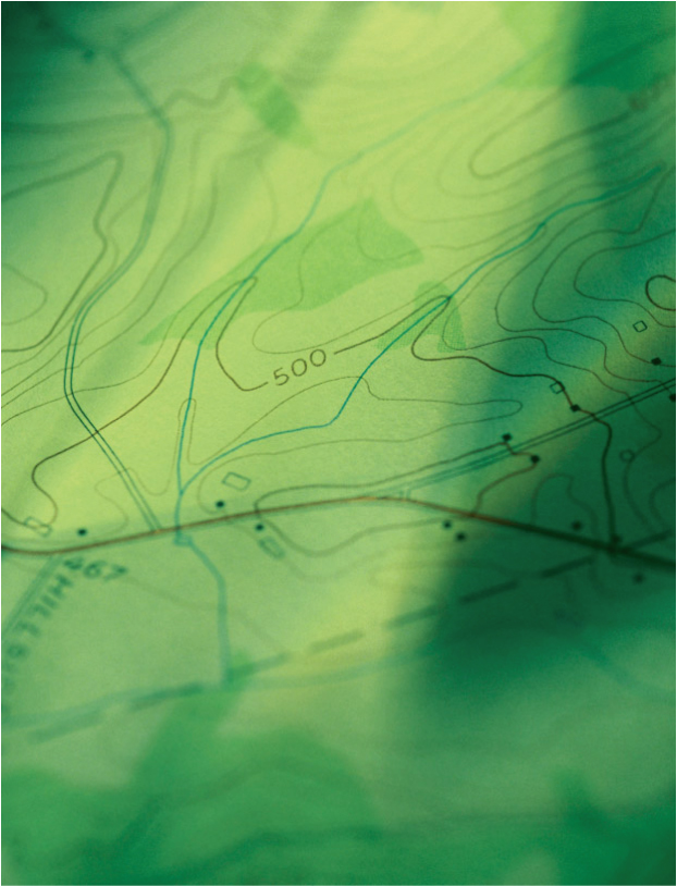 Green Topo Graphic
